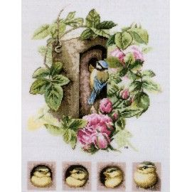 Nesting box with pink roses (29 x 35 cms)